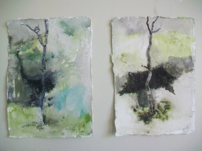 two tree studies Messen 14