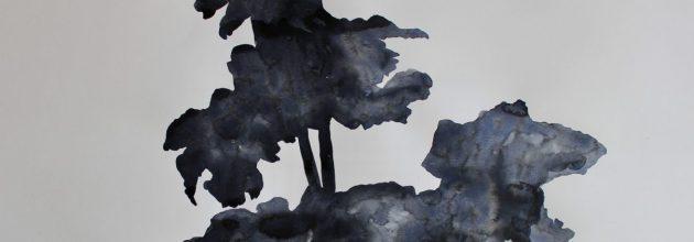 Hardanger Herbarium